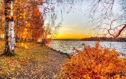 Осенняя береза у реки