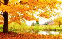 Осень. У реки